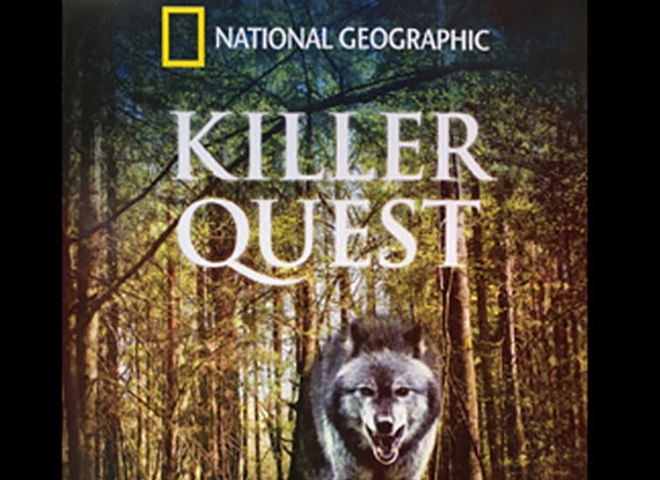 killer-quest-portfolio-picture